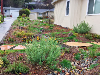 Circlefoot Permaculture is a landcare and permaculture company in San Mateo, California